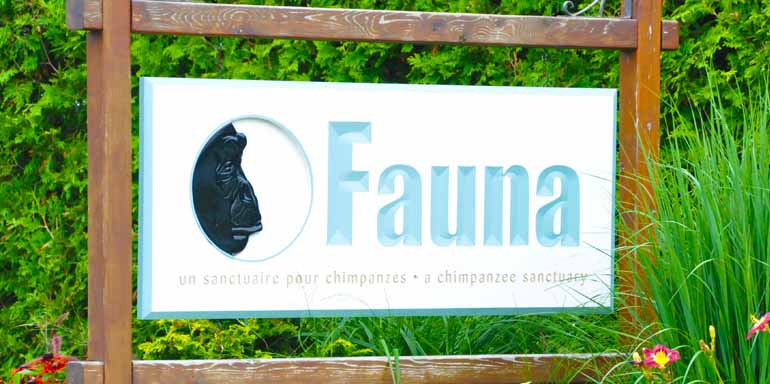 Contact Us — Fauna Foundation