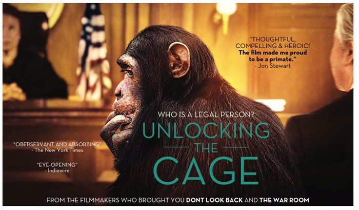 Unlocking the Cage benefit screening for Fauna Foundation.